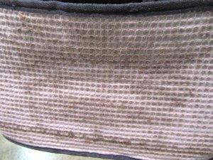 Eureka 313A Enviro Magic Cloth