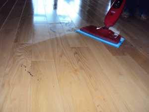 Haan SI-35 Floor Sanitizer-Wood