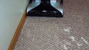 Hoover Platinum UH30010COM on Flour 2