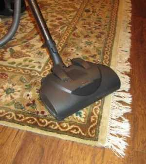 Miele Callisto S5281 Canister Vacuum on Rugs