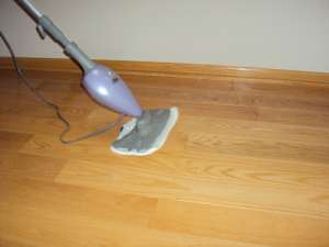 Shark Steam Mop Light And Easy S3101 Review Vacuum Wizard