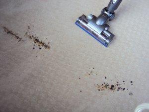 Dyson DC26 Carpets After